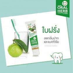 Tailando žolinė dantų pasta...